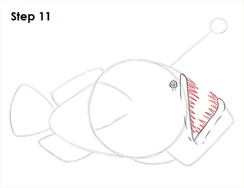 Draw Anglerfish 11