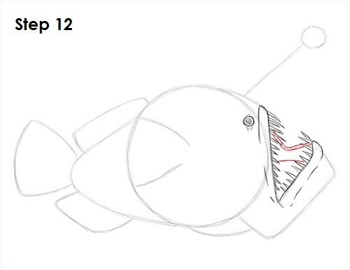 Draw Anglerfish 12