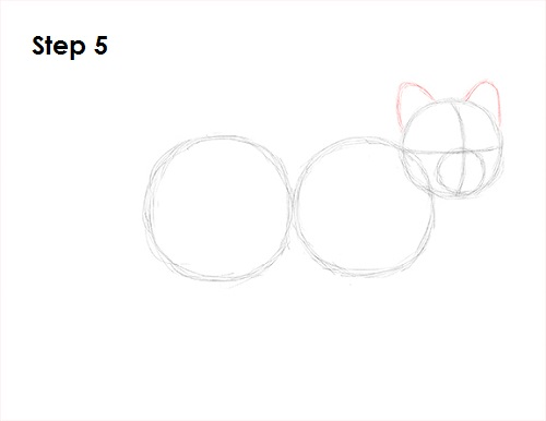 Draw Arctic Fox 5