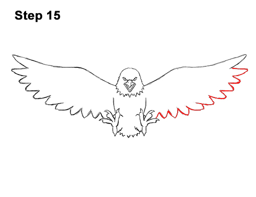 How to Draw Angry Cartoon Bald Eagle Flying Wings Talons 15