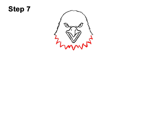 How to Draw Angry Cartoon Bald Eagle Flying Wings Talons 7