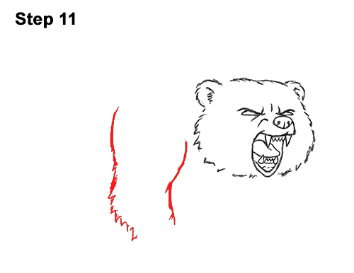 Draw Angry Mean Growling Roaring Cartoon Bear 11