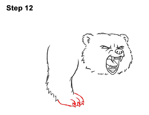 Draw Angry Mean Growling Roaring Cartoon Bear 12
