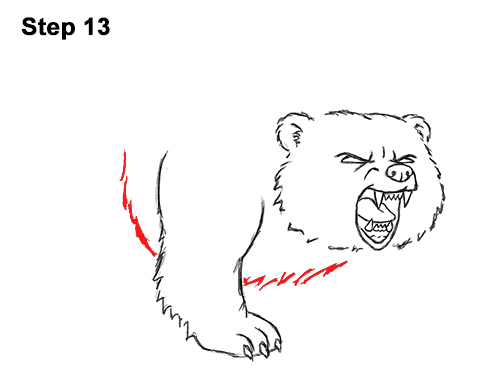 Draw Angry Mean Growling Roaring Cartoon Bear 13