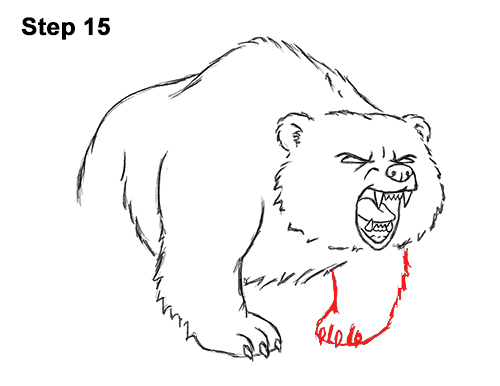 Draw Angry Mean Growling Roaring Cartoon Bear 15