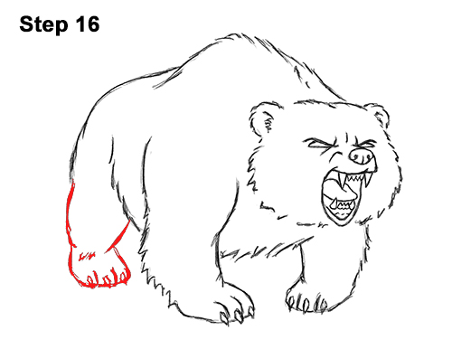 Draw Angry Mean Growling Roaring Cartoon Bear 16