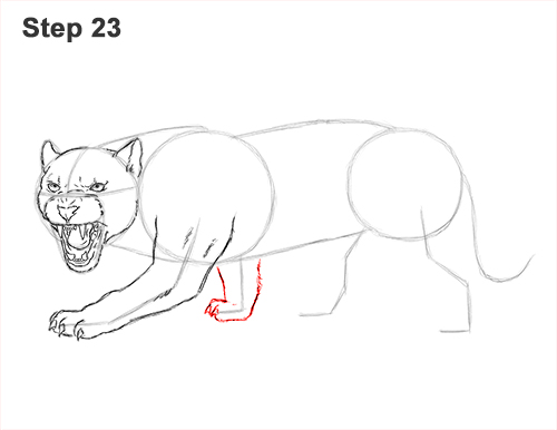 How to Draw an Angry Black Panther Roaring 23
