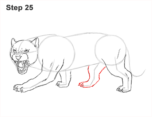 how to draw an angry black panther roaring 25