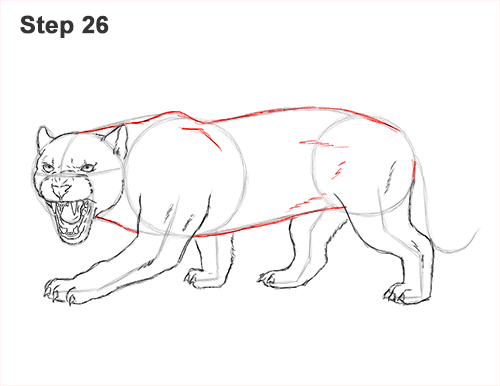 How to Draw an Angry Black Panther Roaring 26