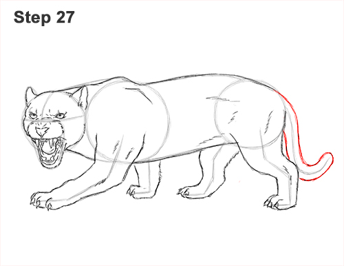 How to Draw an Angry Black Panther Roaring 27