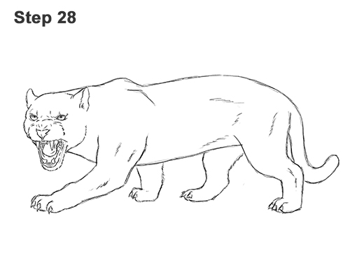 How to Draw an Angry Black Panther Roaring 28