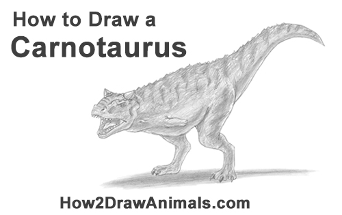 How to Draw a Carnotaurus Dinosaur