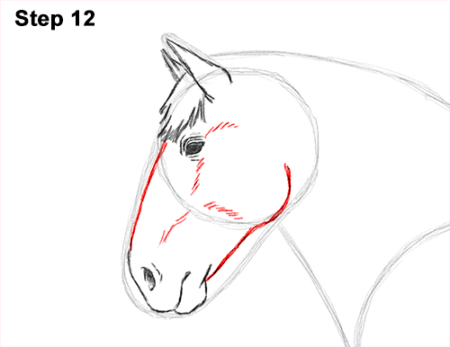how to draw horse poo