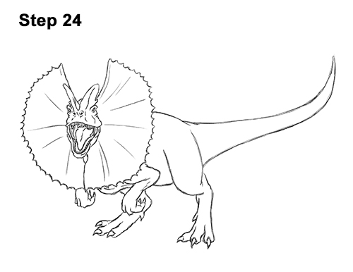 Line Drawing Dinosaur : How to draw a dilophosaurus