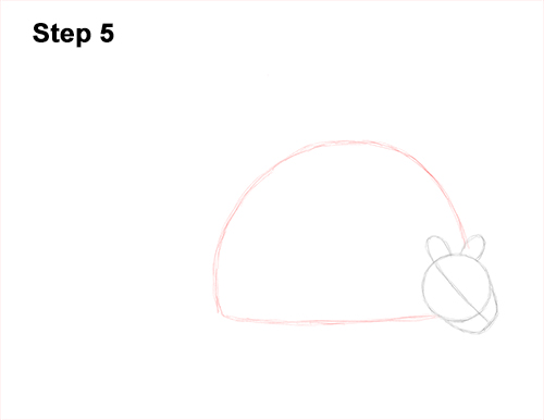 How to Draw a Doedicurus Glyptodon 5