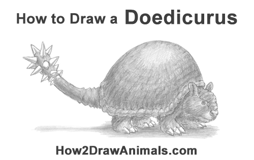 How to Draw a Doedicurus Glyptodon
