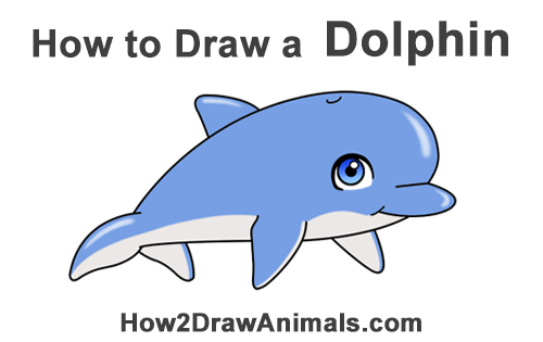 How To Draw A Dolphin Cartoon
