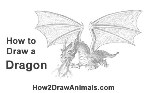 How to Draw Dragon Flying Fire Wings Flames