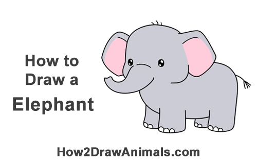 How To Draw A Elephant Cartoon Video Step By Step Pictures