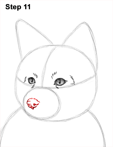 How to Draw a Red Fox Sitting 11