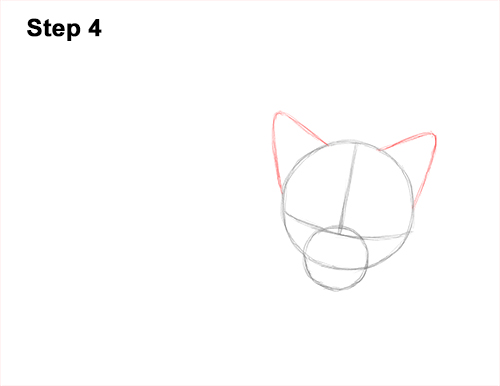 How to Draw Cute Red Fox Sleeping Asleep 4