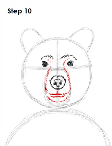 How to draw a bear  YouTube