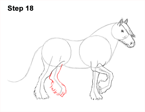 How to Draw a Horse Gypsy Vanner Irish Cob 18