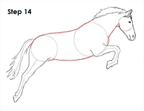 How to draw a horse jumping draw a horse jumping 14 ccuart Images