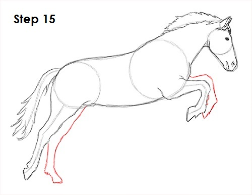 Gallery For gt How To Draw A Horse Running Easy