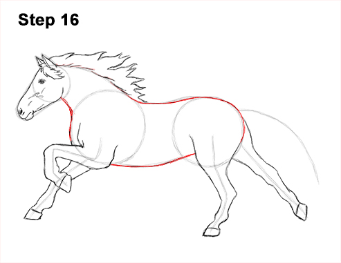 Learn How to Sketch a Running Horse  ThoughtCo