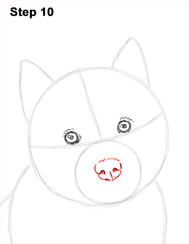 Draw Husky Puppy Dog 10