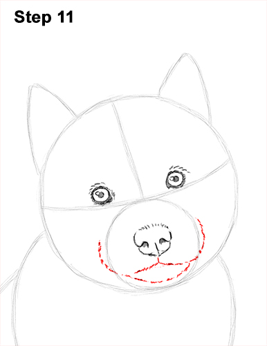 Draw Husky Puppy Dog 11