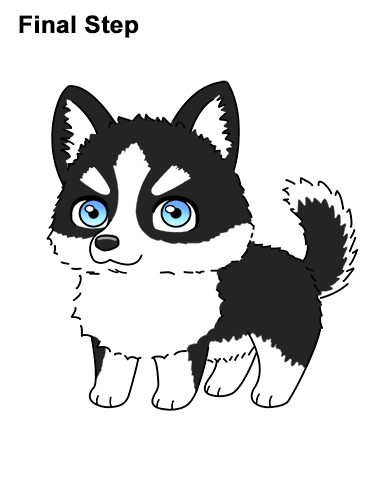 How to Draw a Cute Chibi Little Mini Cartoon Husky Puppy Dog