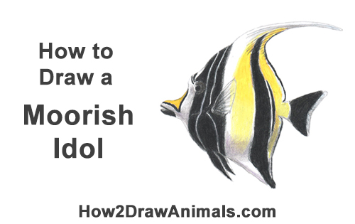 How to Draw Moorish Idol Black Yellow Fish Nemo Gill