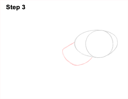 How to Draw an Octopus Swimming Tentacles 3