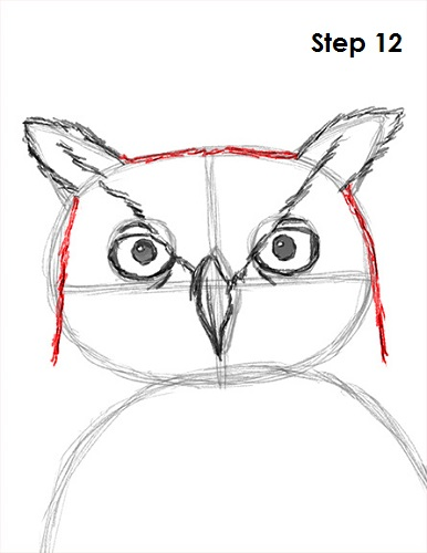How to draw an owl great horned for Owl beak drawing