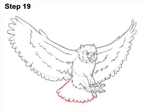 How to Draw a Great Horned Owl Flying Hunting Wings 19