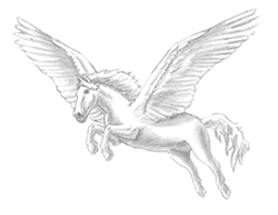 How to Draw a Pegasus Horse Wings