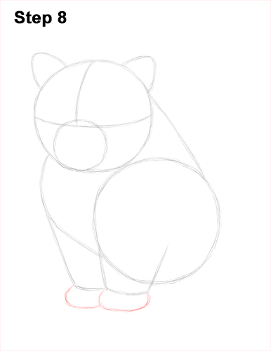Draw Persian Kitty Cat 8