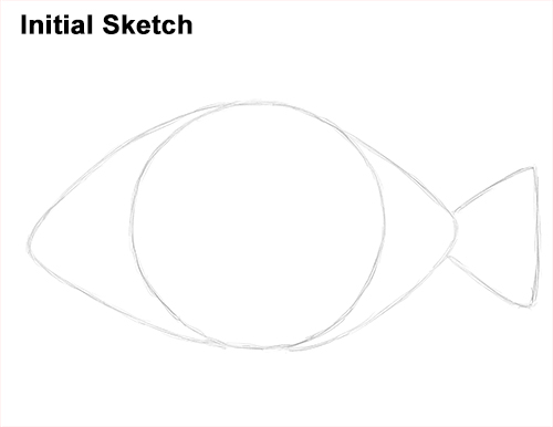 Draw Piranha Fish Initial Sketch