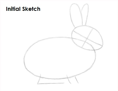 how to draw a tiger rabbit