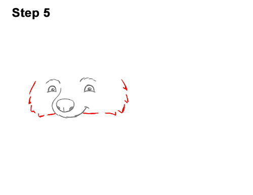 How to Draw Cute Cartoon Raccoon 5