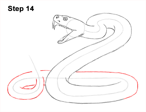 Draw Diamondback Rattlesnake 14