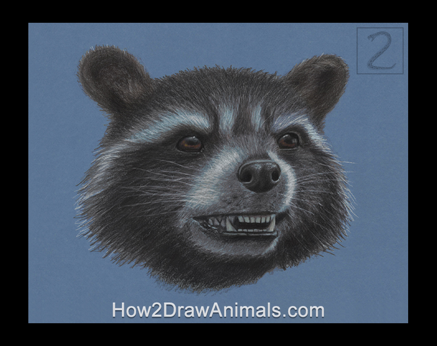 Rocket Raccoon Portrait Drawing Marvel