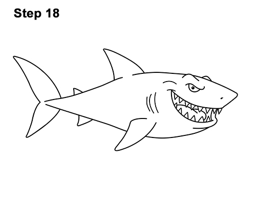 Line Drawing Shark : How to draw a shark cartoon