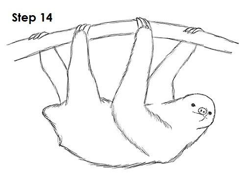 additional sos sloth pictures to draw