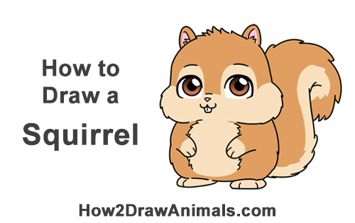 Cartoon Pic Of Squirrel: How To Draw A Squirrel (Cartoon