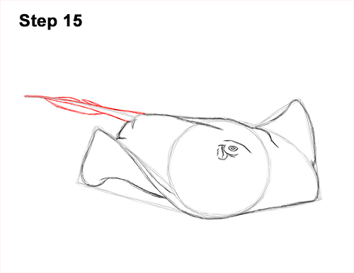 How to Draw a southern common Stingray swimming 15