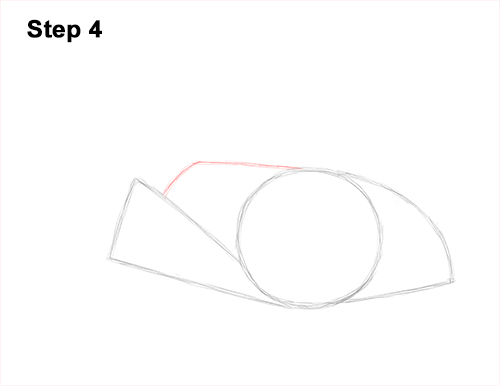 How to Draw a southern common Stingray swimming 4