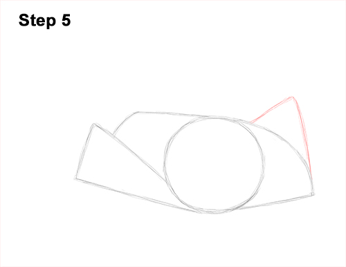 How to Draw a southern common Stingray swimming 5